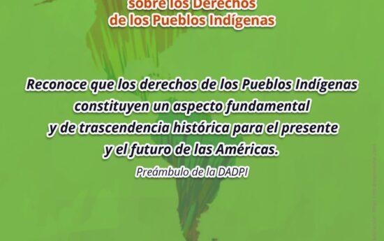 La Declaración Americana sobre los Derechos de los Pueblos Indígenas es el primer instrumento de la OEA que promueve y protege sus derechos en el continente. Permite que estos participen en todos los temas relacionados con su desarrollo, reconociendo sus derechos comunitarios. El documento abarca el conjunto de derechos que poseen las Comunidades Indígenas, derechos […]