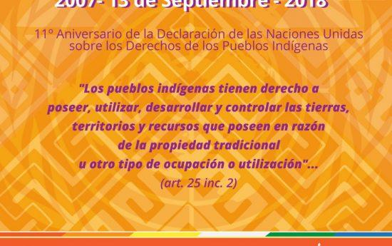 La Declaración de la ONU sobre los derechos de los Pueblos Indígenas, partiendo de los principios de dignidad e igualdad de estos Pueblos y su derecho a determinar libremente su destino, establece lo que debe garantizarse como mínimo en todos los países.