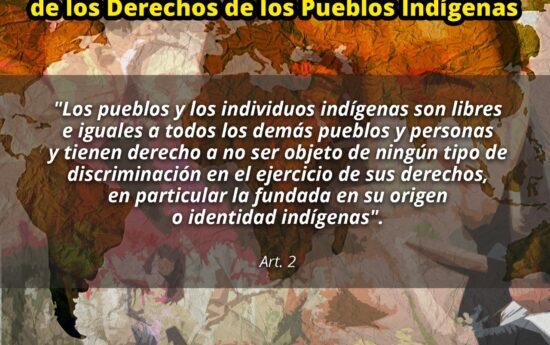 …los pueblos indígenas son iguales a todos los demás pueblos y reconociendo al mismo tiempo el derecho de todos los pueblos a ser diferentes, a considerarse a sí mismos diferentes y a ser respetados como tales. La Declaración de las Naciones Unidas sobre los Derechos de los Pueblos Indígenas, que fue adoptada en la ciudad […]
